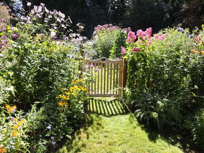 Colibrí Flores - Las mejores 18 familias de plantas para el néctar natural