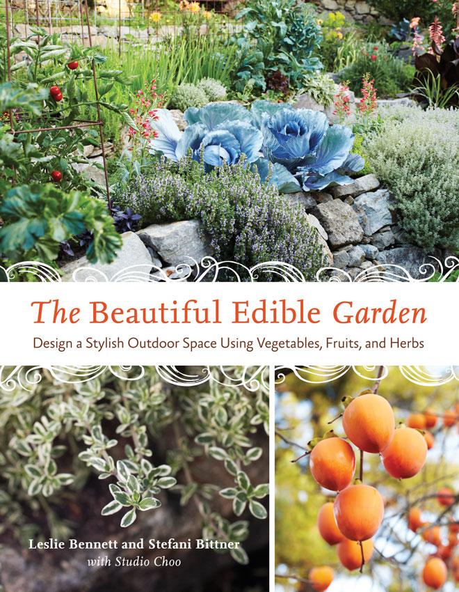 Marvelous Mirabelle Plum Trees - Perfiles de las plantas - Heirloom Gardener